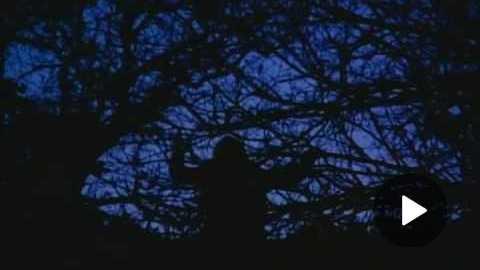 River's Edge Trailer (1986)