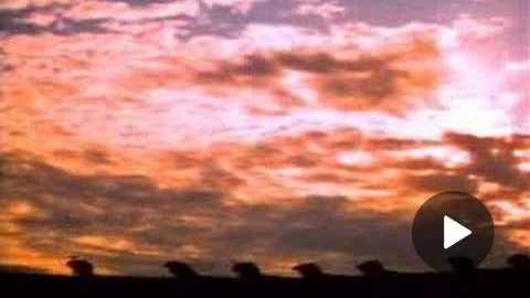 The Dark Crystal (1982) Trailer
