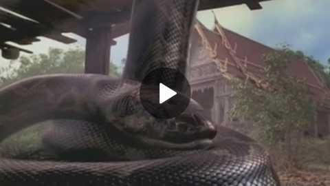 Anaconda Telugu Full Movie | Part 2/2 | Hollywood Dubbed Movies | AR Entertainment